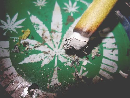Palenie marihuany nie powoduje raka płuc górnych dróg oddechowych, GrubyLoL.com
