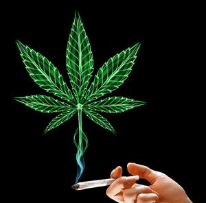 neonowa-marihuana-joint