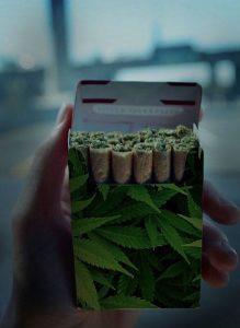 Pięć zastosowań marihuany w medycynie, GrubyLoL.com