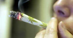 Badanie: Marihuana może leczyć uzależnienie od twardych narkotyków, GrubyLoL.com