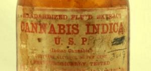 medyczna-marihuana-hc-cbd-leczenie-marihuana-historia-fakt-marihuana