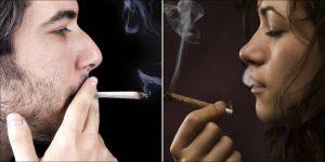 Relatywne prawdy dla nocnych palaczy, GrubyLoL.com