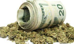 Nowy podatek od marihuany, GrubyLoL.com