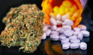 Czy można palić marihuanę podczas przyjmowania antybiotyków?, GrubyLoL.com