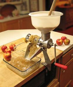Mus jabłkowy, GrubyLoL.com