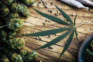 Efekty uboczne stosowania marihuany, GrubyLoL.com