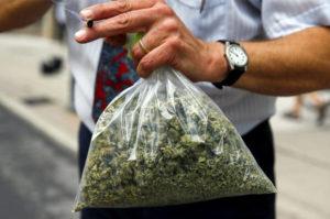 Czy marihuana jest legalna na Florydzie?, GrubyLoL.com