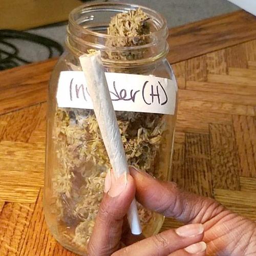Recenzja Nasion Marihuany Odmiany Invader, GrubyLoL.com