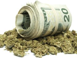 Leczenie marihuaną, GrubyLoL.com