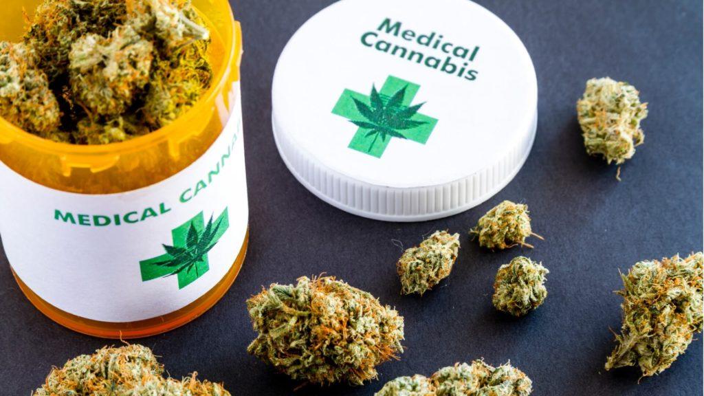 Marihuana w Południowej Afryce, GrubyLoL.com