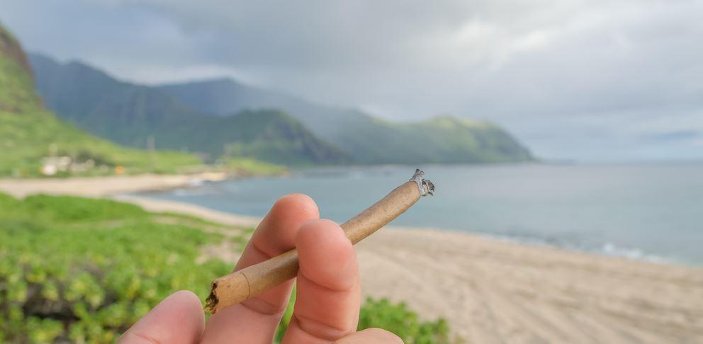 Medyczna marihuana łagodzi objawy HIV, GrubyLoL.com