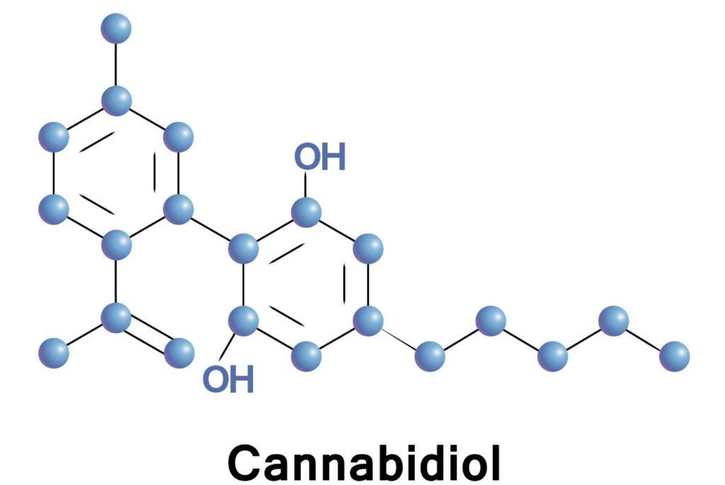 Stosowanie CBD w leczeniu stanów lękowych, GrubyLoL.com