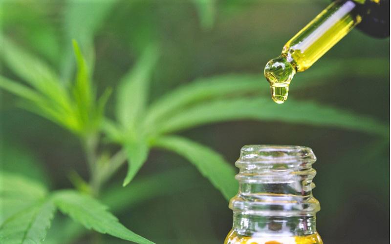 Farmaceuci zostali ostrzeżeni przed produktami CBD, GrubyLoL.com