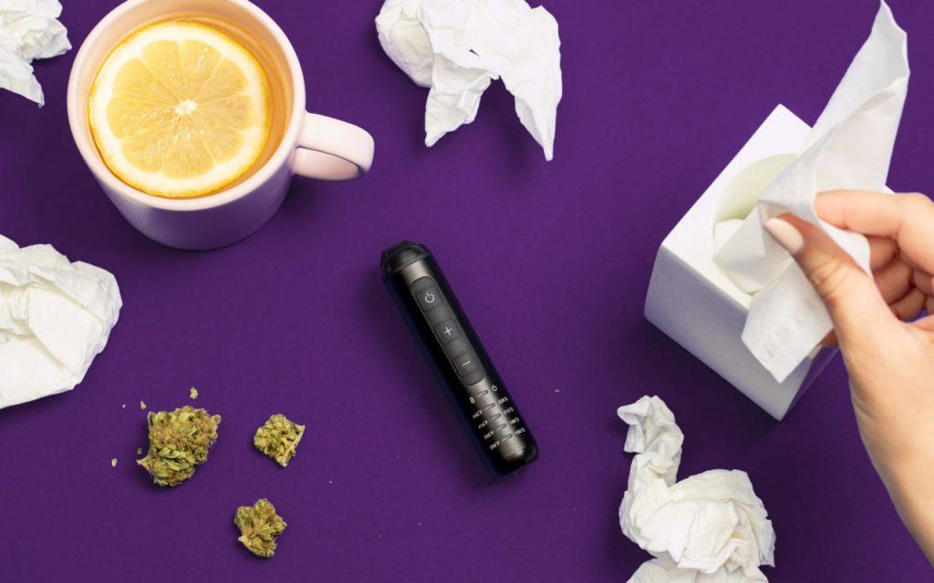 Cannabis na przeziębienie i grypę, GrubyLoL.com
