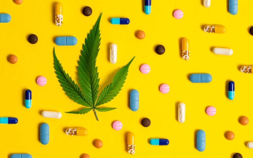 Rodzaje testów antynarkotykowych THC, GrubyLoL.com