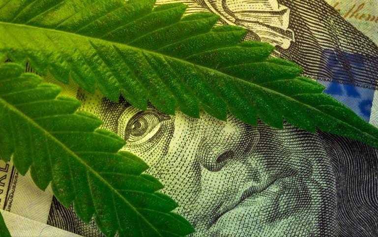 Ekstrakty Marihuany Zabijają Komórki Rakowe, GrubyLoL.com
