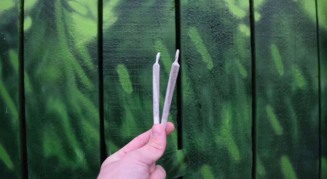 Czy Możesz Przedawkować Marihuanę?, GrubyLoL.com